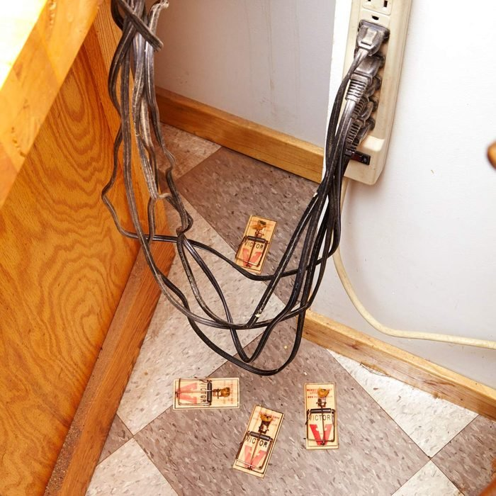 How to Catch a Mouse in the House: Look for the Pathways