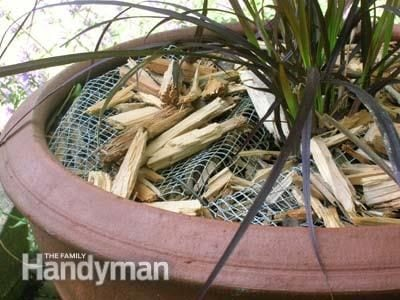 Keep rodents and pests out of your garden containers