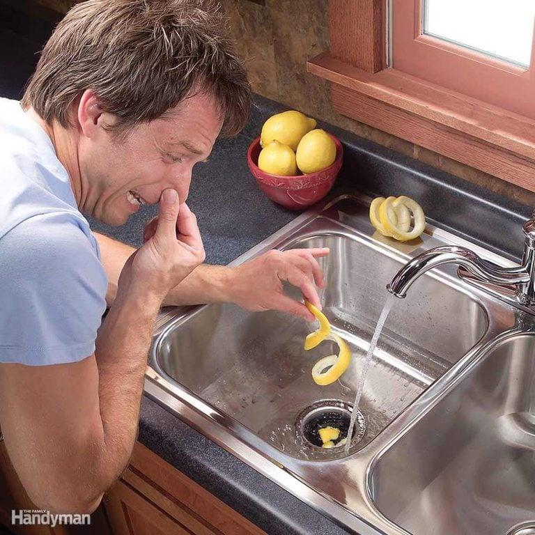 lemon rind down sink disposal