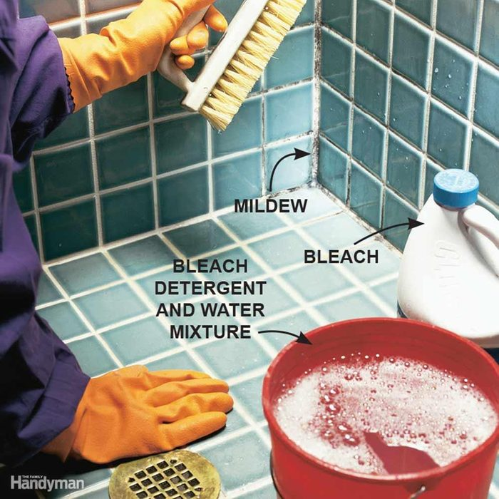 Don't Ignore Mold