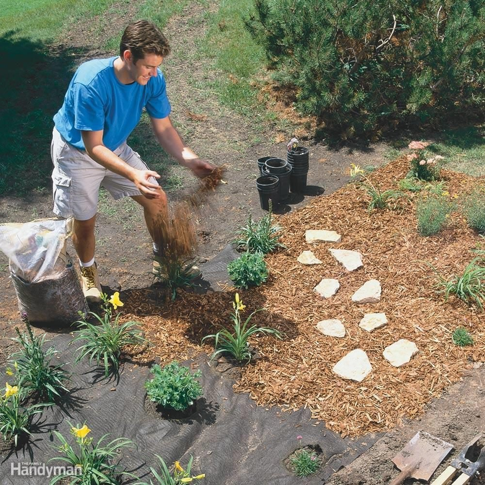 Low-maintenance perennial garden