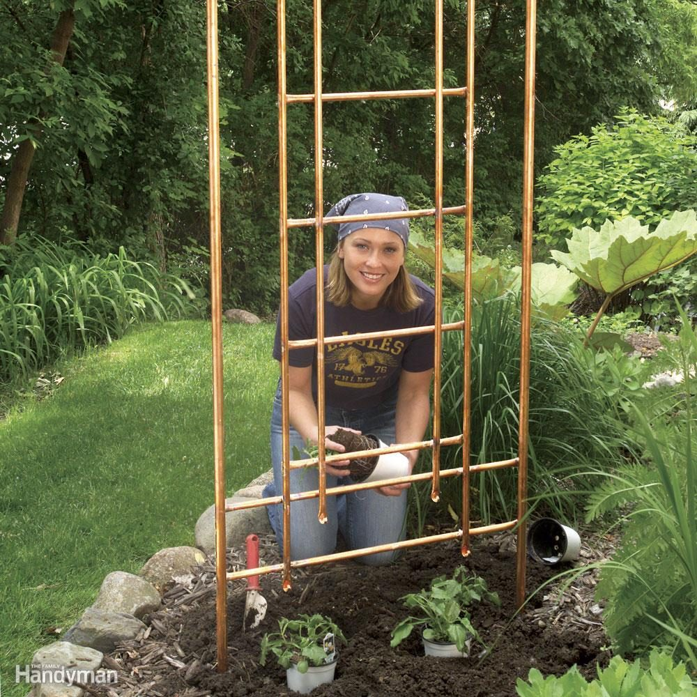 Build a Copper Trellis for Your Garden