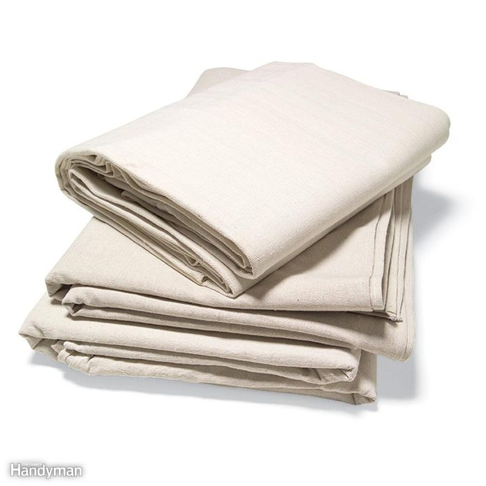 Cover the Carpet With Canvas Drop Cloths