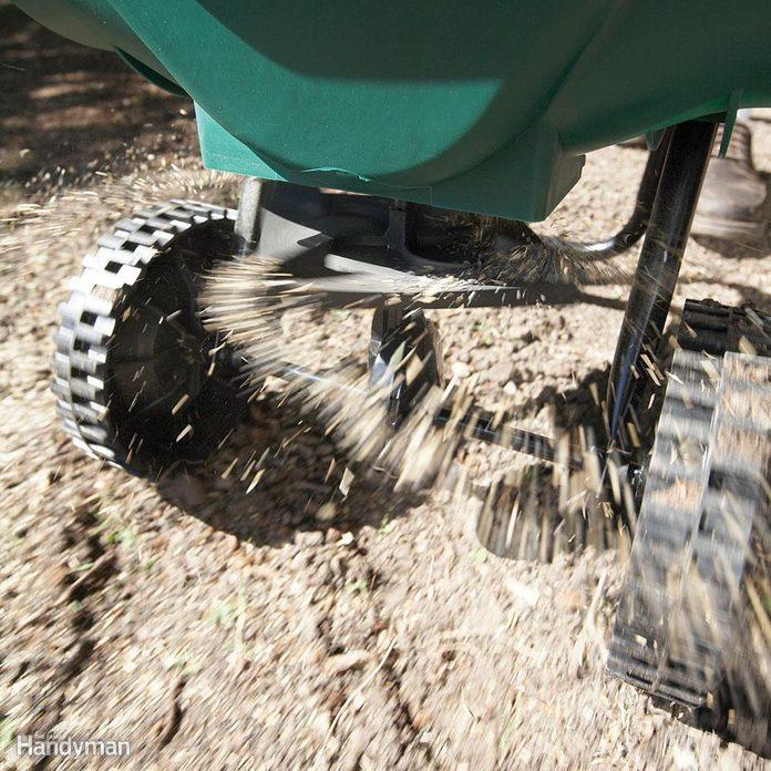 Step 6: Add a starter fertilizer