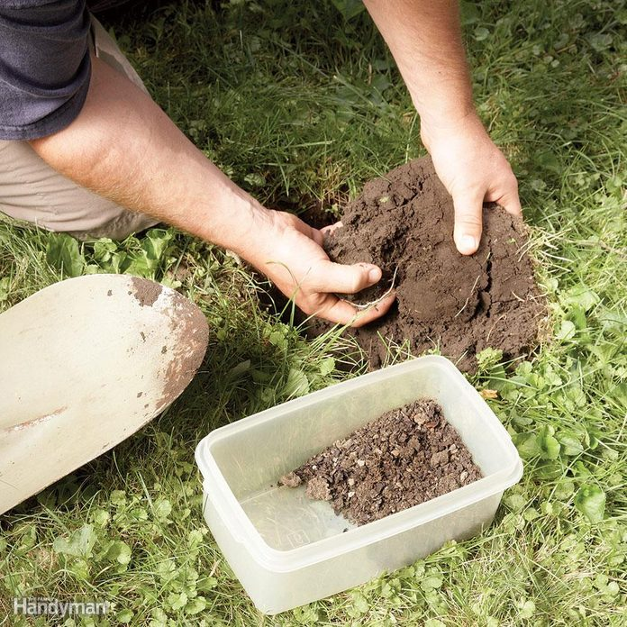 Step 1: Get a soil analysis