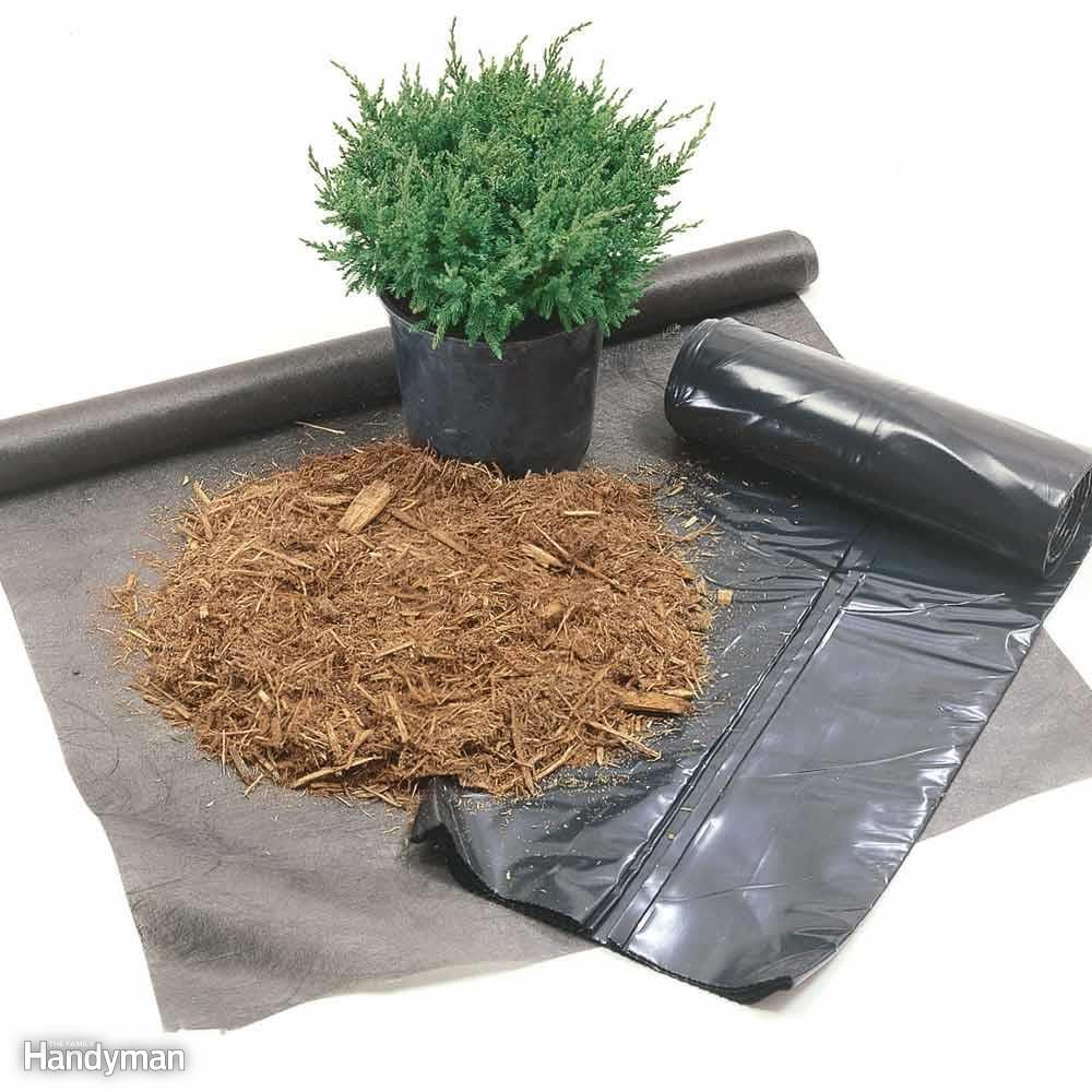 What's the Best Weed Barrier?