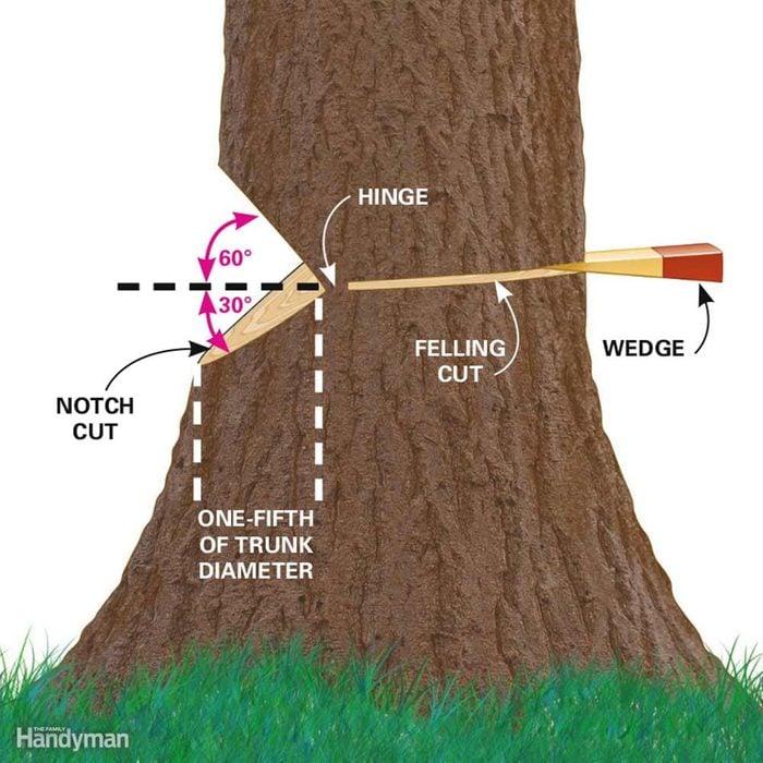 Anatomy of a Proper Notch