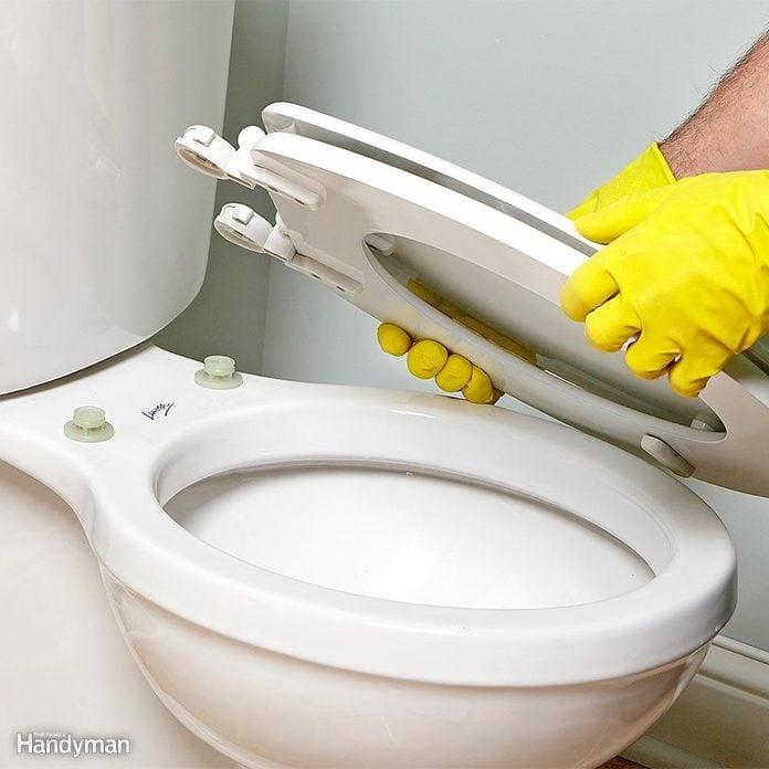 Install a Detachable Toilet Seat