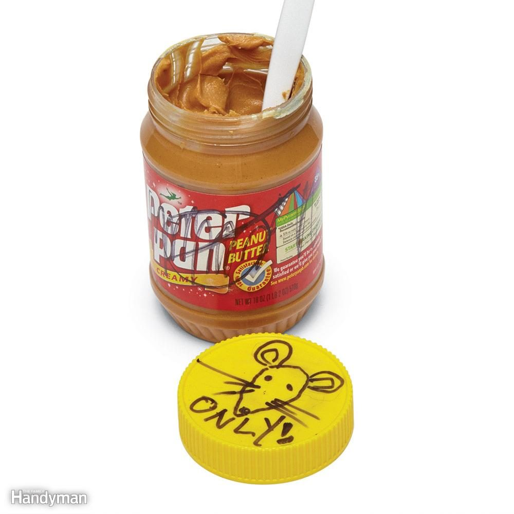 Peanut Butter is the Best Bait