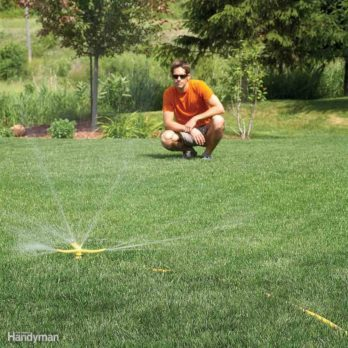 30 Tips for Achieving a Lush Lawn This Season