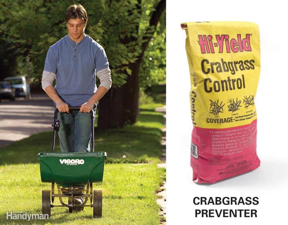 Apply a Preemergent Herbicide