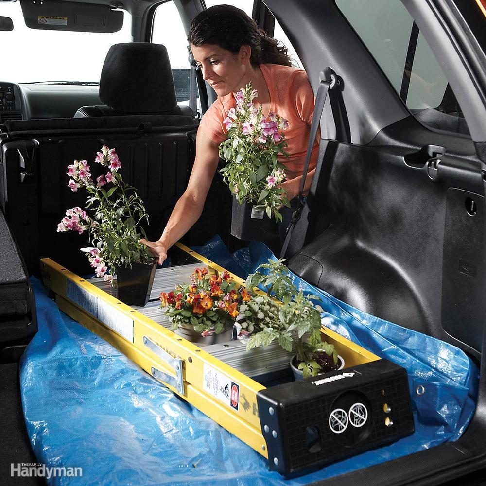 Potted Plant Transport