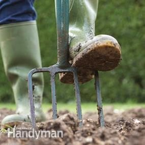 Setting up a New Garden: Choose the Right Site