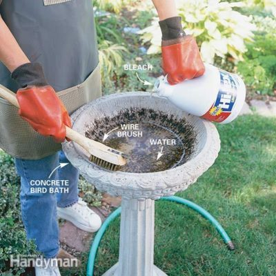 how to clean a bird bath