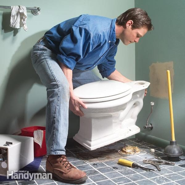 How to Repair a Leaking Toilet Seat Replacement  Family Handyman