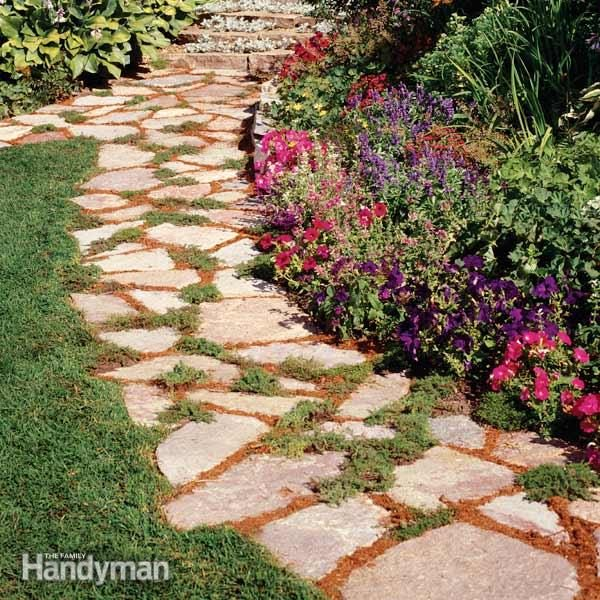 Tips For Successfully Growing Plants Between Stepping Stones