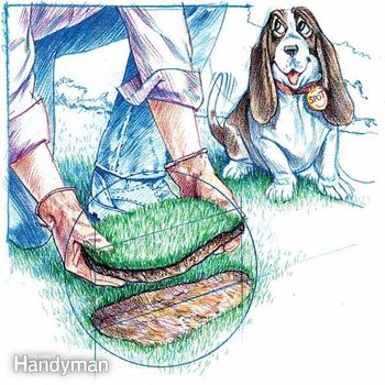 illustration of a piece of sod being laid into a bare patch of ground