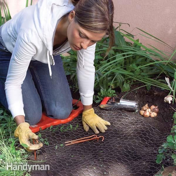 Tips For Easier Gardening The Family Handyman