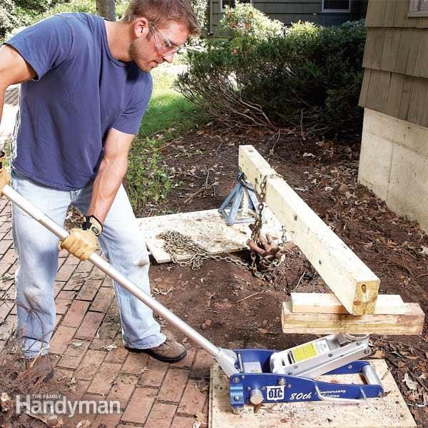 How To Remove Shrubs And Shrub Roots The Family Handyman