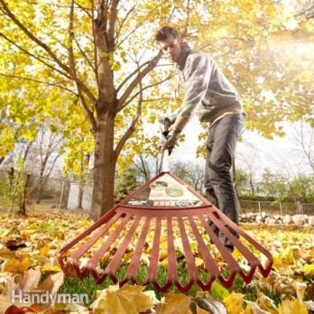 5 Ways Smart Homeowners Deal With Fall Leaves
