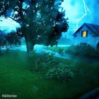 Storm Survival Guide