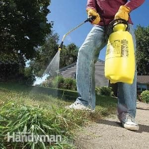 13 Tips for Getting Rid of Crabgrass for Good
