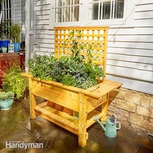 Raised Patio Planter