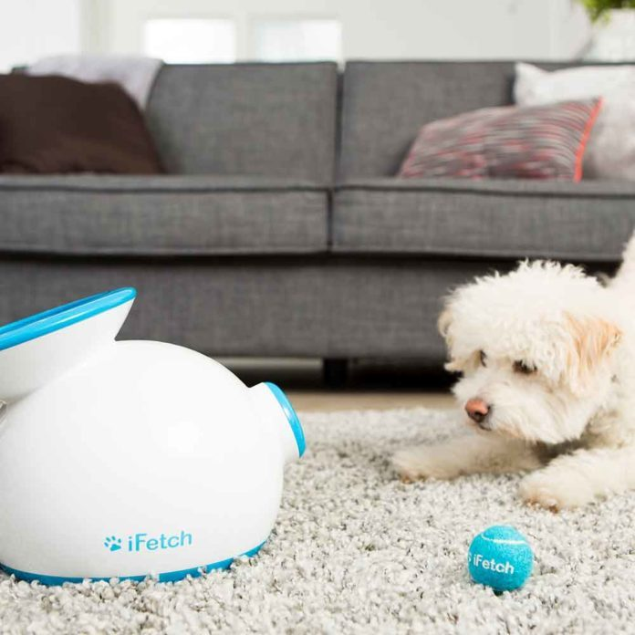 10 High-Tech Gadgets You and Your Pet will Love