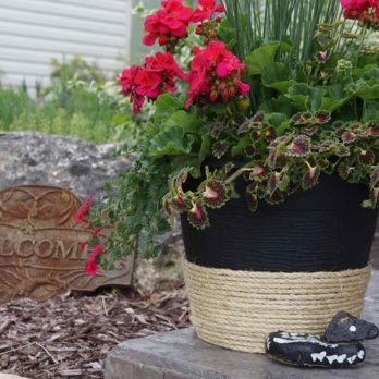 5 Easy Ways to Dress Up a Cheap Planter