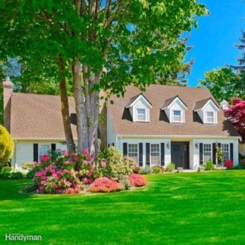 13 Curb Appeal Ideas You Can Do Yourself