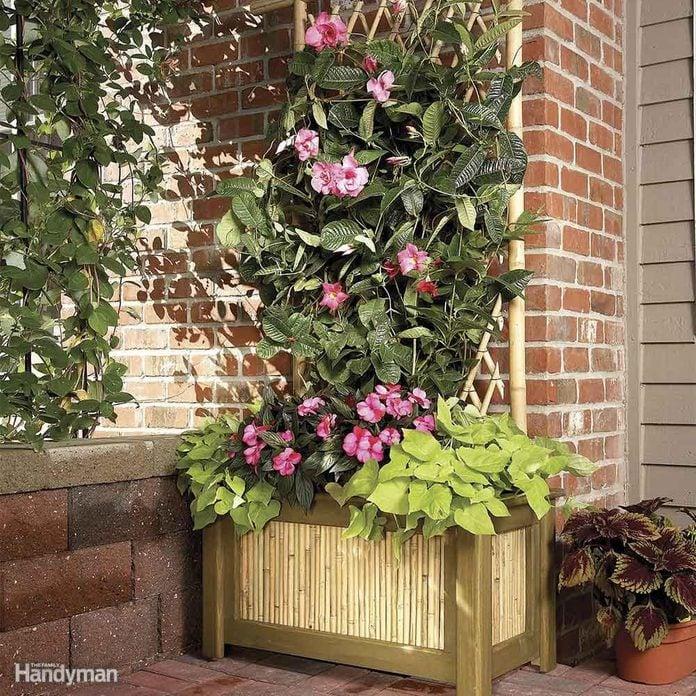 trellis planter diy backyard