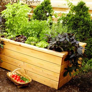 20 Spring Projects To Start Planning