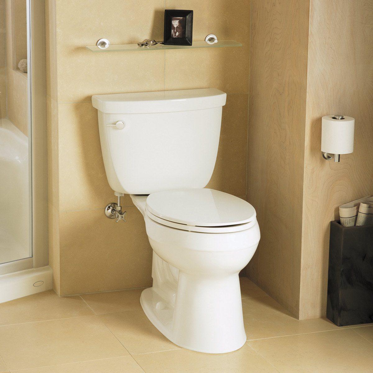 toilet shopping tips family handyman. Black Bedroom Furniture Sets. Home Design Ideas