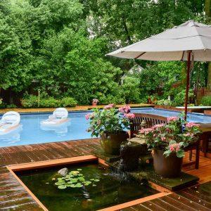 Amazing Backyard Swimming Pools