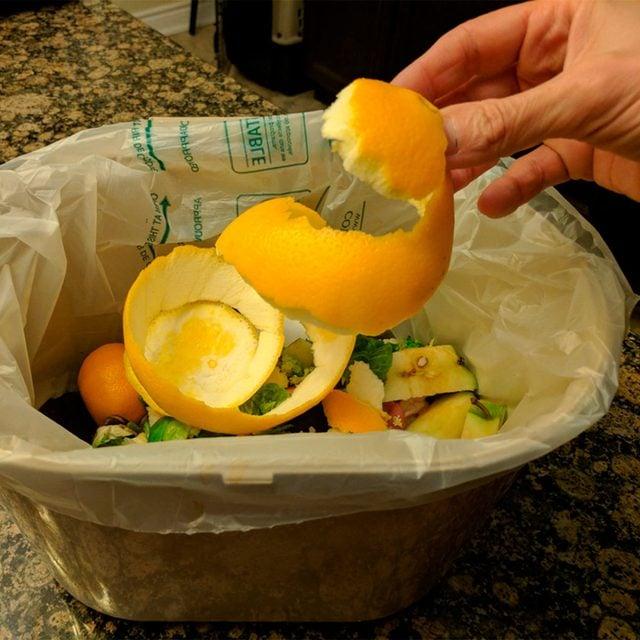 orange peel compost