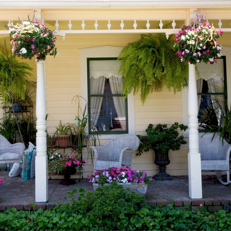 porch with plants