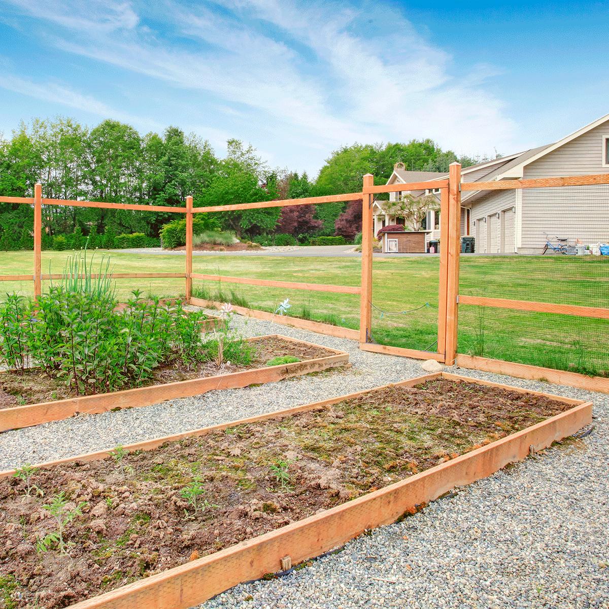 fenced in vegetable garden