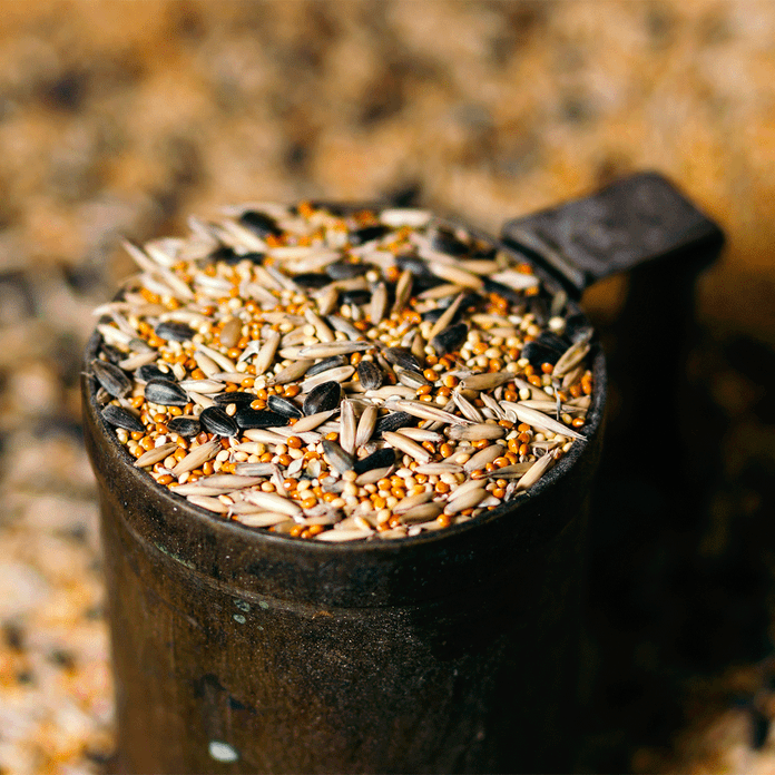 bird seed for pest control