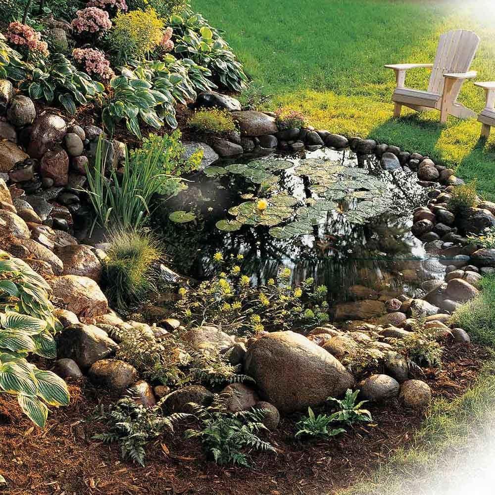Water Garden Pond