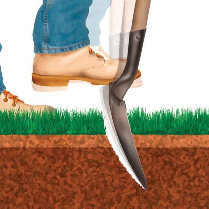 How to grow greener grass magic bullet # 1. Water deeply, but not often