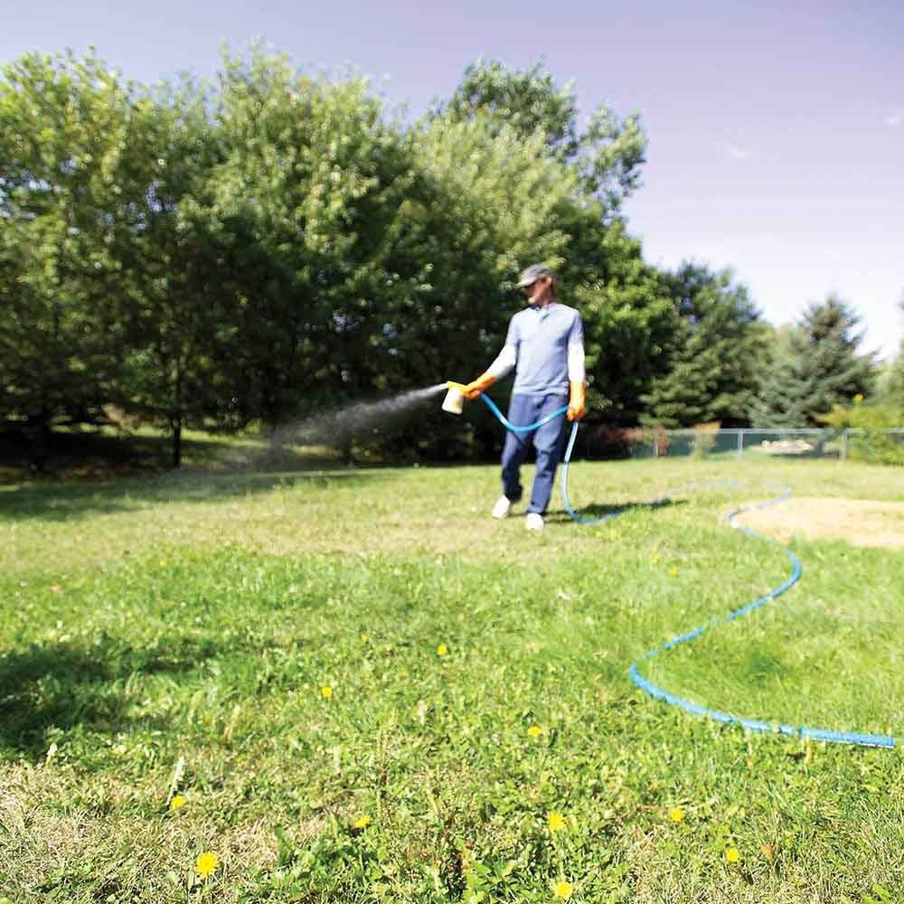 Simpler and cheaper: 3. Use liquid broadleaf weed killers