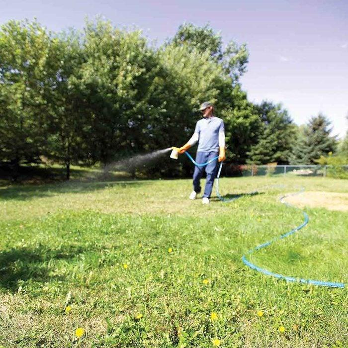 Simpler and cheaper: 3. Use liquid broadleaf weed killers