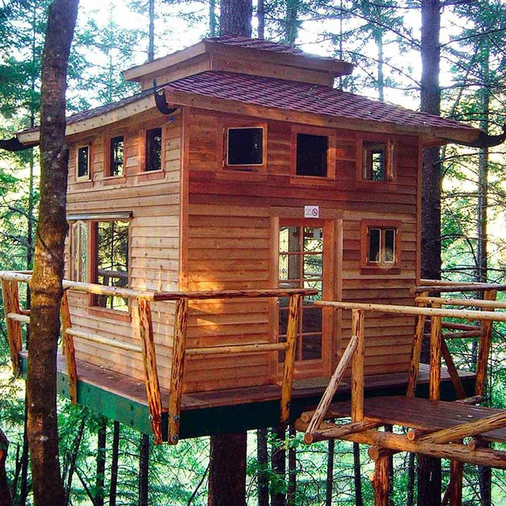 Tree house inspiration Amazing Tree House Ideas