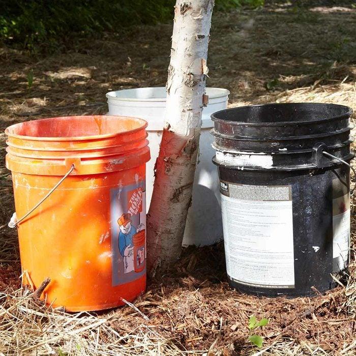 Better Tree Watering