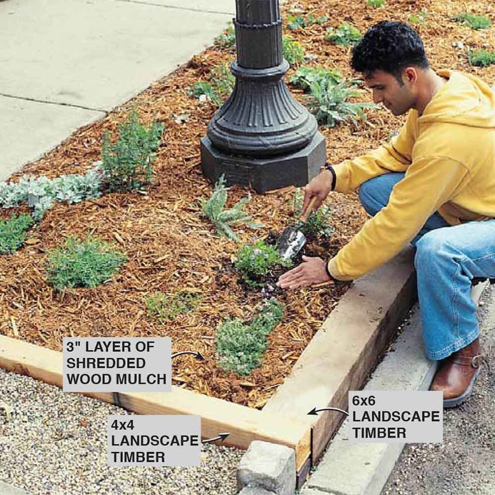 Hardy Plants And Tips For A Boulevard Garden The Family Handyman