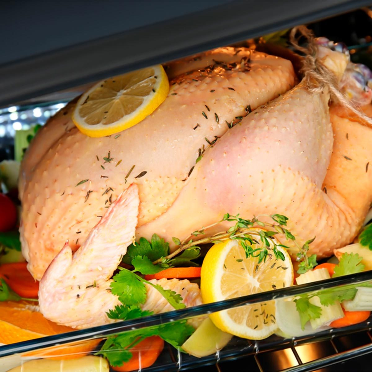 turkey in oven