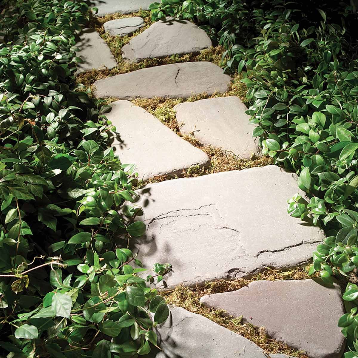 planted path with stepping stones