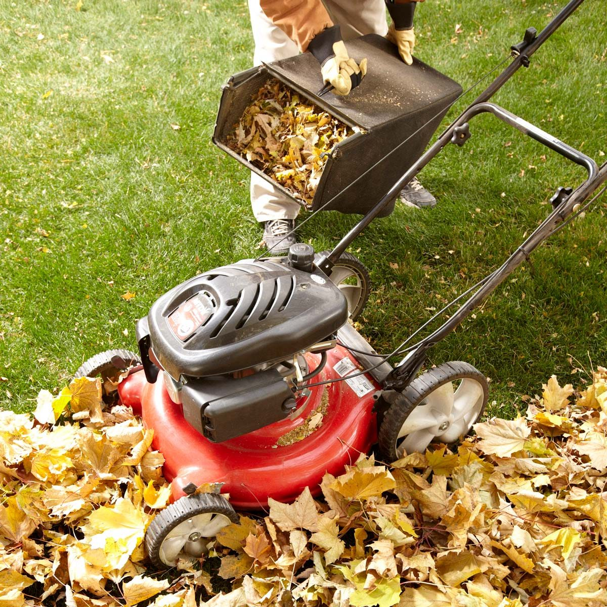 Stand Ride On Leaf Blower Rental: 14 Tips For Dealing With Leaves Like A Pro