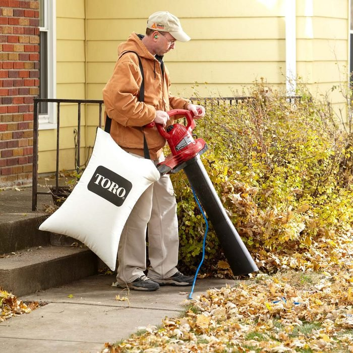 How to Get Rid of Leaves with a Yard Vac