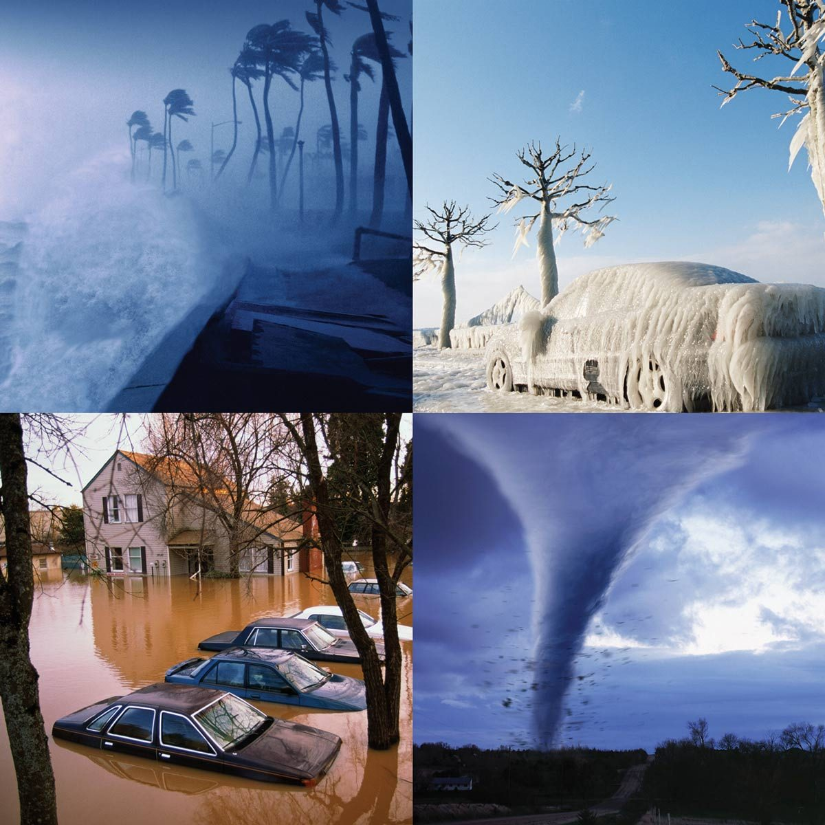 protect your home and family: severe weather guide   the